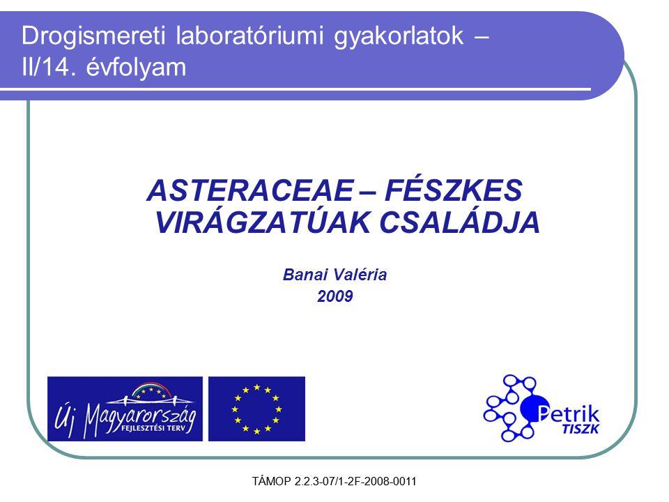 TÁMOP 2.2.3-07/1-2F-2008-0011 Drogismereti laboratóriumi gyakorlatok – II/14. évfolyam ASTERACEAE – FÉSZKES VIRÁGZATÚAK CSALÁDJA Banai Valéria 2009