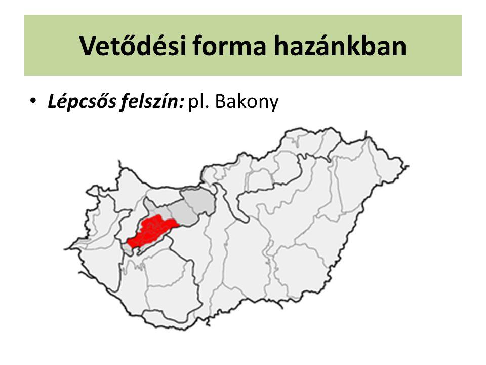 Vetődési forma hazánkban Lépcsős felszín: pl. Bakony