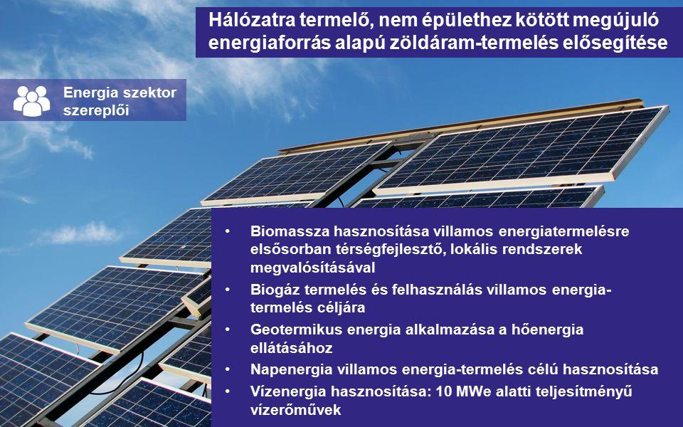 Hálózatra termelő, nem épülethez kötött megújuló energiaforrás alapú zöldáram-termelés elősegítése Biomassza hasznosítása villamos energiatermelésre elsősorban térségfejlesztő, lokális rendszerek megvalósításával Biogáz termelés és felhasználás villamos energia- termelés céljára Geotermikus energia alkalmazása a hőenergia ellátásához Napenergia villamos energia-termelés célú hasznosítása Vízenergia hasznosítása: 10 MWe alatti teljesítményű vízerőművek Energia szektor szereplői