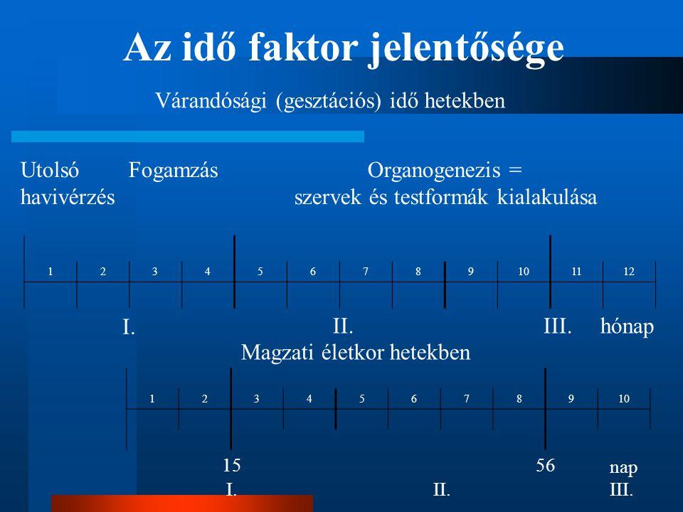 Utolsó Fogamzás Organogenezis = havivérzés szervek és testformák kialakulása 123456789101112 12345678910 Várandósági (gesztációs) idő hetekben Magzati