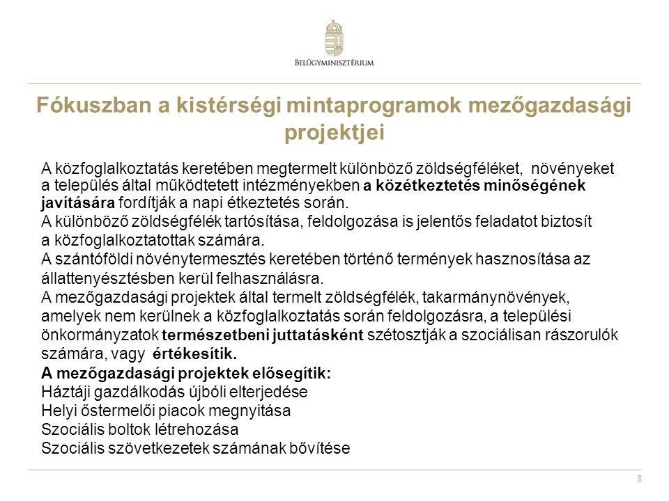 19 Legfontosabb jogszabályok 1991.évi IV.