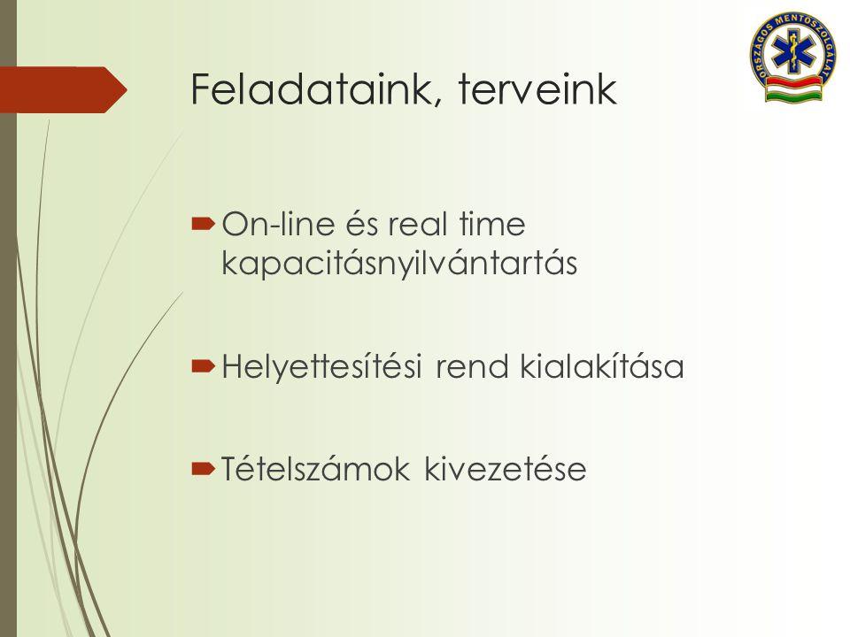 Feladataink, terveink  On-line és real time kapacitásnyilvántartás  Helyettesítési rend kialakítása  Tételszámok kivezetése