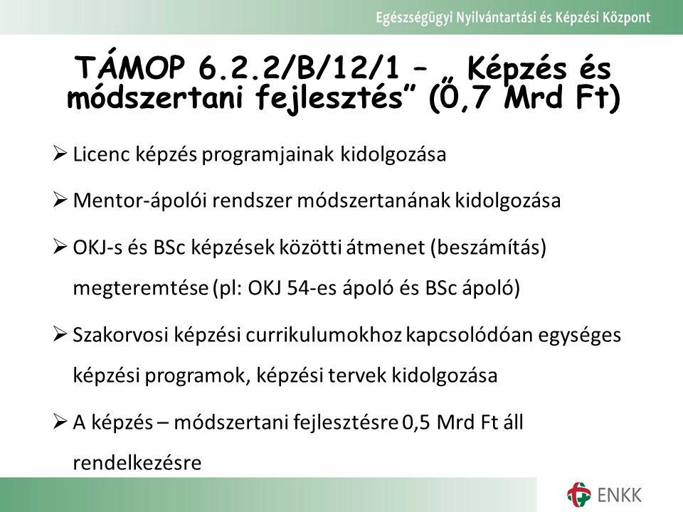 """TÁMOP 6.2.2/B/12/1 – """" Képzés és módszertani fejlesztés"""" (0,7 Mrd Ft)  Licenc képzés programjainak kidolgozása  Mentor-ápolói rendszer módszertanána"""