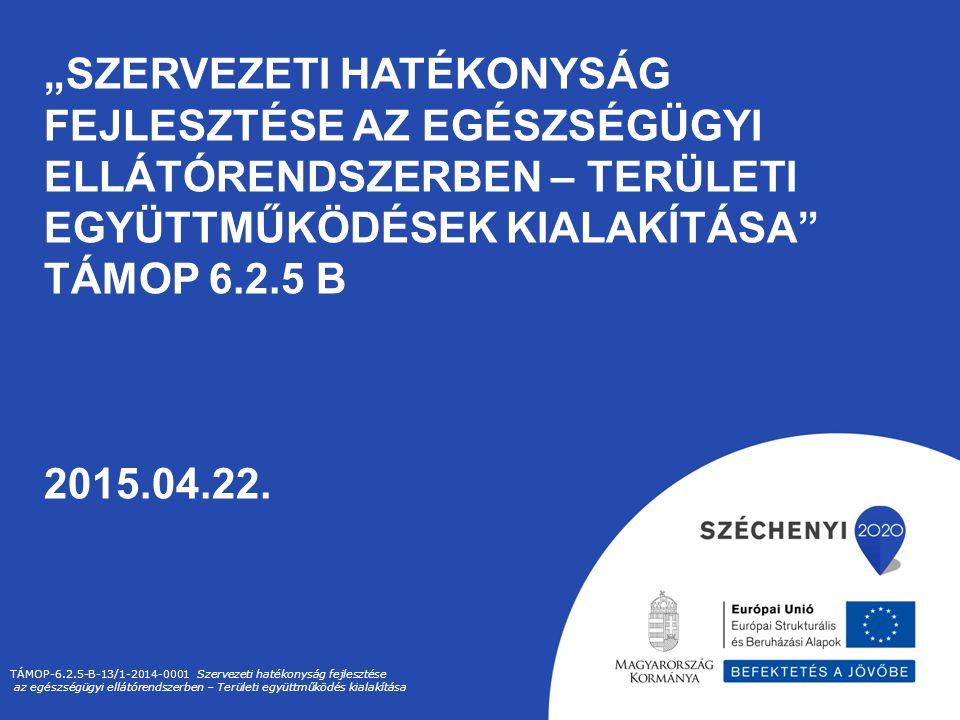 """""""SZERVEZETI HATÉKONYSÁG FEJLESZTÉSE AZ EGÉSZSÉGÜGYI ELLÁTÓRENDSZERBEN – TERÜLETI EGYÜTTMŰKÖDÉSEK KIALAKÍTÁSA"""" TÁMOP 6.2.5 B 2015.04.22. TÁMOP-6.2.5-B-"""