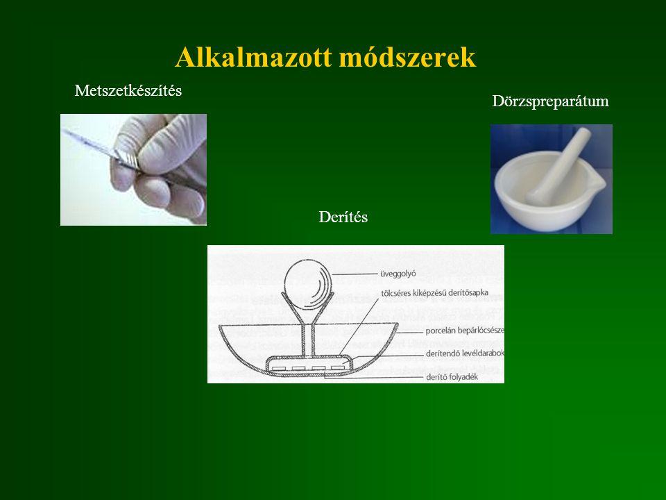 Derítési eljárás metszetkészítés nélkül vizsgálható a növényi szerv lépései:  előkészítés  puhítás  oldás  oxidálás  fixálás  festés, állandósítás