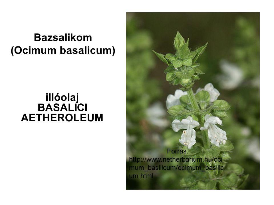Forrás: http://www.netherbarium.hu/oci mum_basilicum/ocimum_basilic um.html Bazsalikom (Ocimum basalicum) illóolaj BASALICI AETHEROLEUM