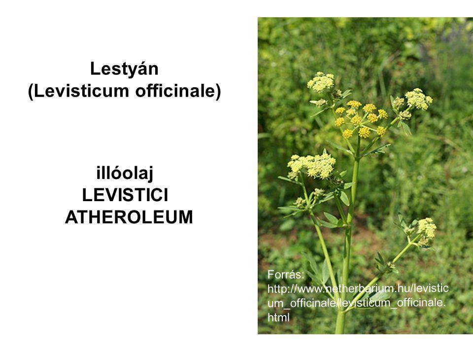Lestyán (Levisticum officinale) illóolaj LEVISTICI ATHEROLEUM Forrás: http://www.netherbarium.hu/levistic um_officinale/levisticum_officinale. html