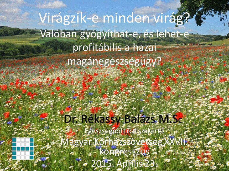 Kétszintű egészségügy Dr. Rékassy Balázs M.Sc. rekassy@t-online.hu