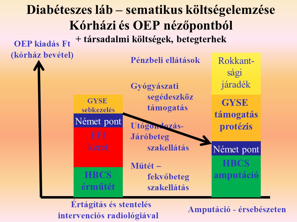 Diabéteszes láb – sematikus költségelemzése Kórházi és OEP nézőpontból + társadalmi költségek, betegterhek Pénzbeli ellátások Gyógyászati segédeszköz