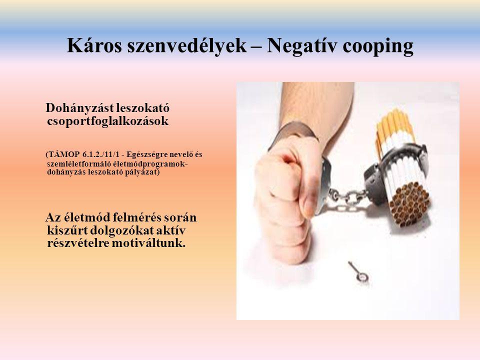 Káros szenvedélyek – Negatív cooping Dohányzást leszokató csoportfoglalkozások (TÁMOP 6.1.2./11/1 - Egészségre nevelő és szemléletformáló életmódprogr