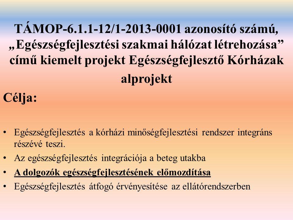 """TÁMOP-6.1.1-12/1-2013-0001 azonosító számú, """"Egészségfejlesztési szakmai hálózat létrehozása"""" című kiemelt projekt Egészségfejlesztő Kórházak alprojek"""