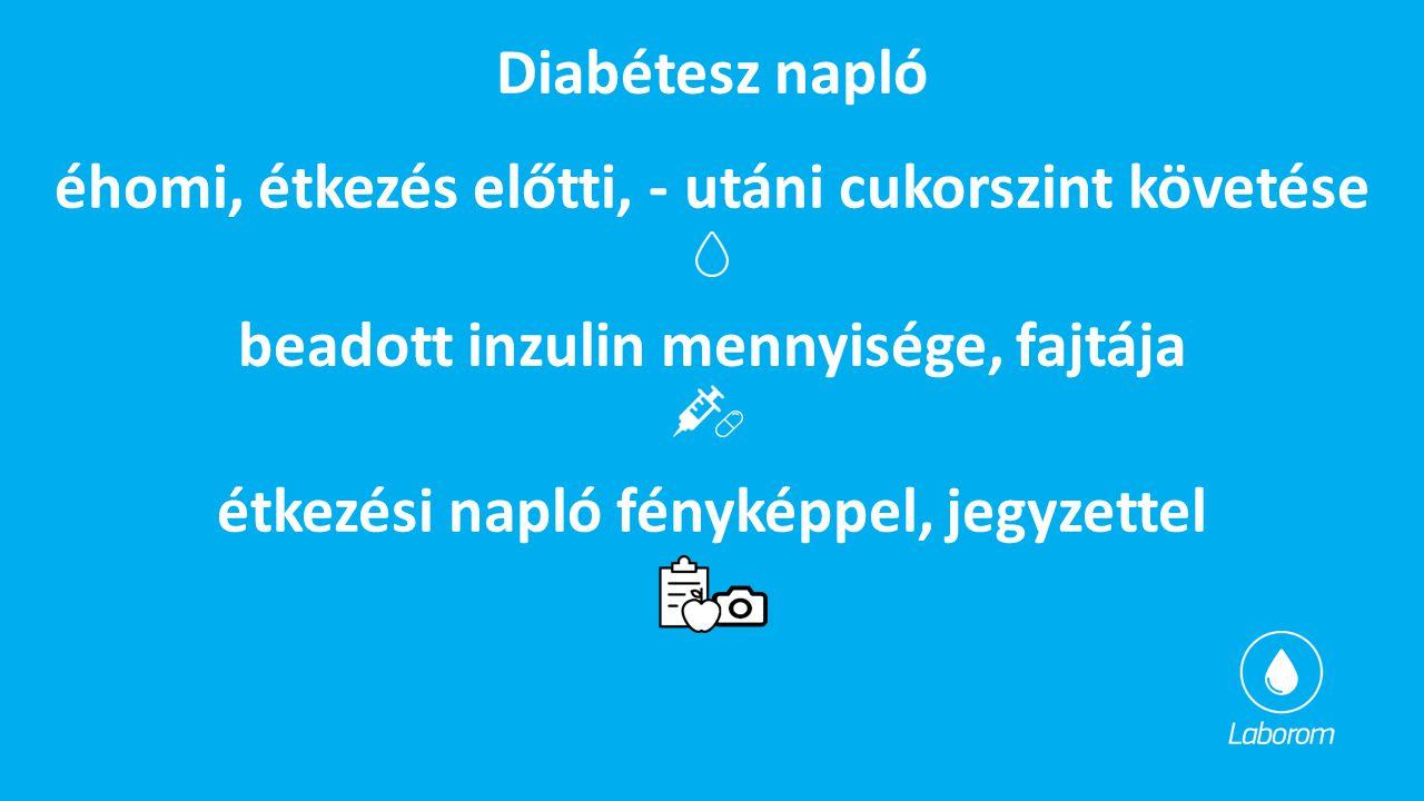 éhomi, étkezés előtti, - utáni cukorszint követése Diabétesz napló étkezési napló fényképpel, jegyzettel beadott inzulin mennyisége, fajtája