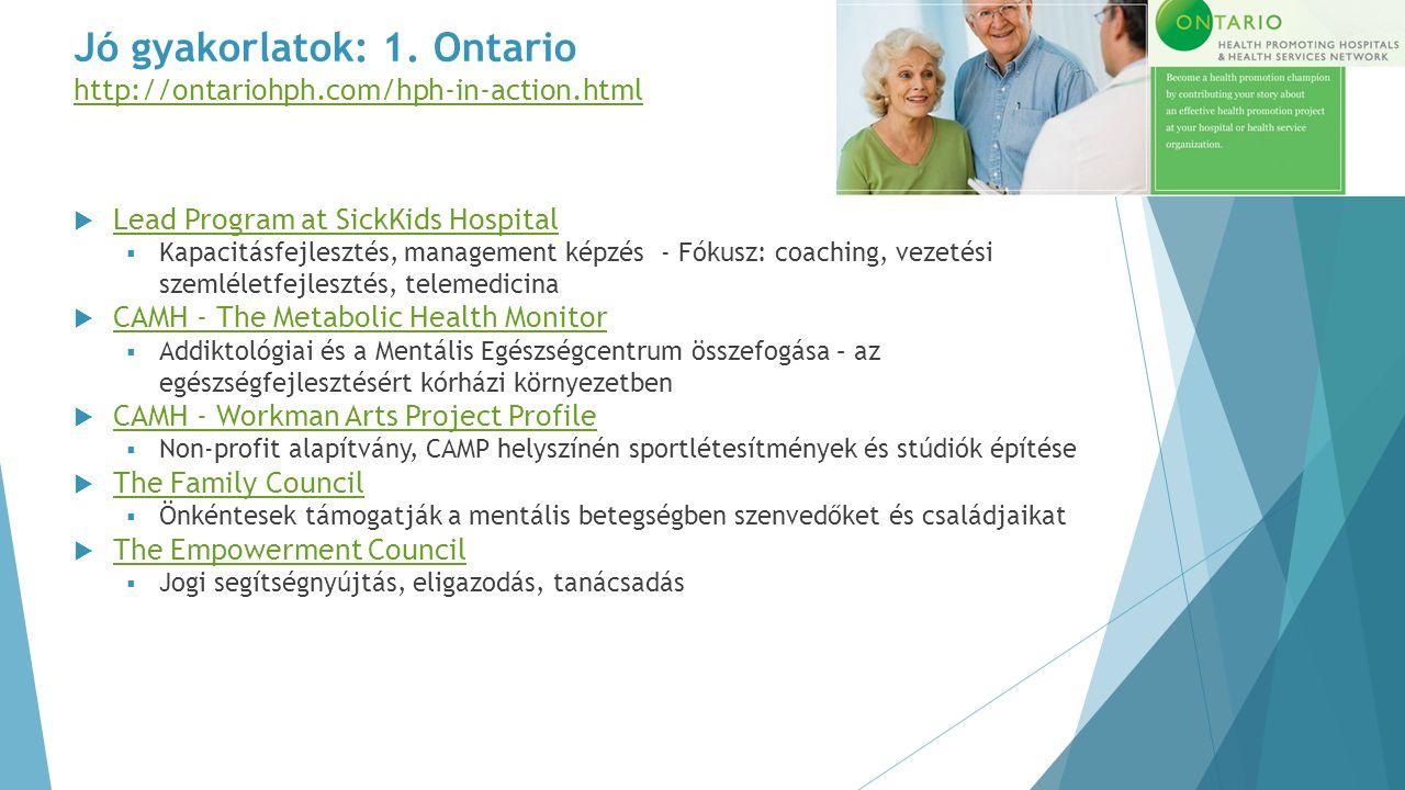 Jó gyakorlatok: 1. Ontario http://ontariohph.com/hph-in-action.html http://ontariohph.com/hph-in-action.html  Lead Program at SickKids Hospital Lead