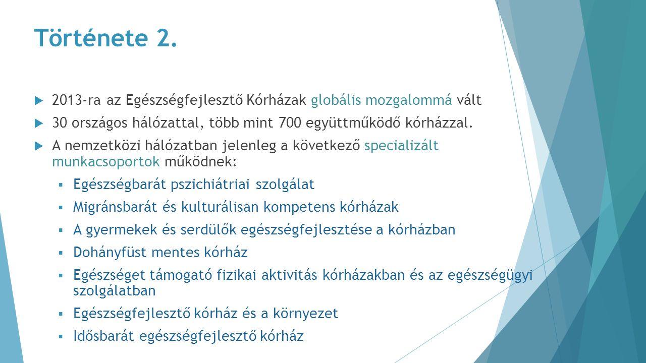 Története 2.  2013-ra az Egészségfejlesztő Kórházak globális mozgalommá vált  30 országos hálózattal, több mint 700 együttműködő kórházzal.  A nemz