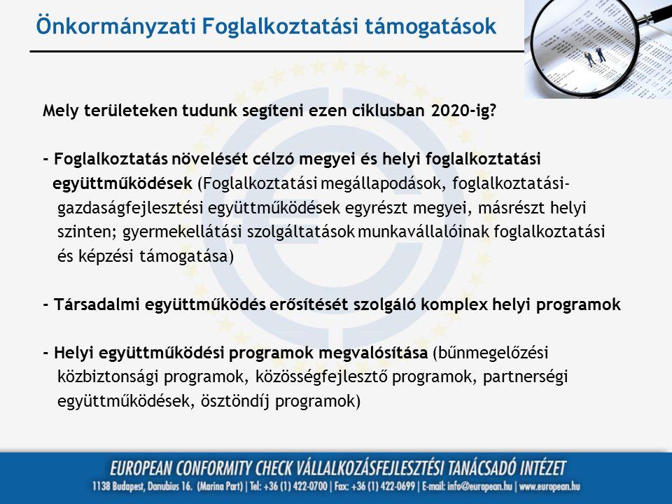 Önkormányzati Foglalkoztatási támogatások Mely területeken tudunk segíteni ezen ciklusban 2020-ig? - Foglalkoztatás növelését célzó megyei és helyi fo