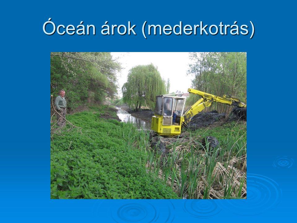 Dunakeszi, Óceán árok