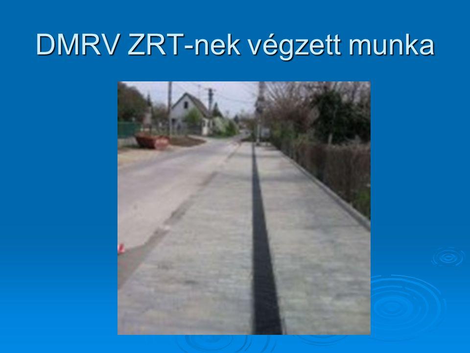 DMRV ZRT-nek végzett munka