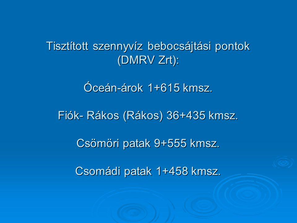 Tisztított szennyvíz bebocsájtási pontok (DMRV Zrt): Óceán-árok 1+615 kmsz. Fiók- Rákos (Rákos) 36+435 kmsz. Csömöri patak 9+555 kmsz. Csomádi patak 1