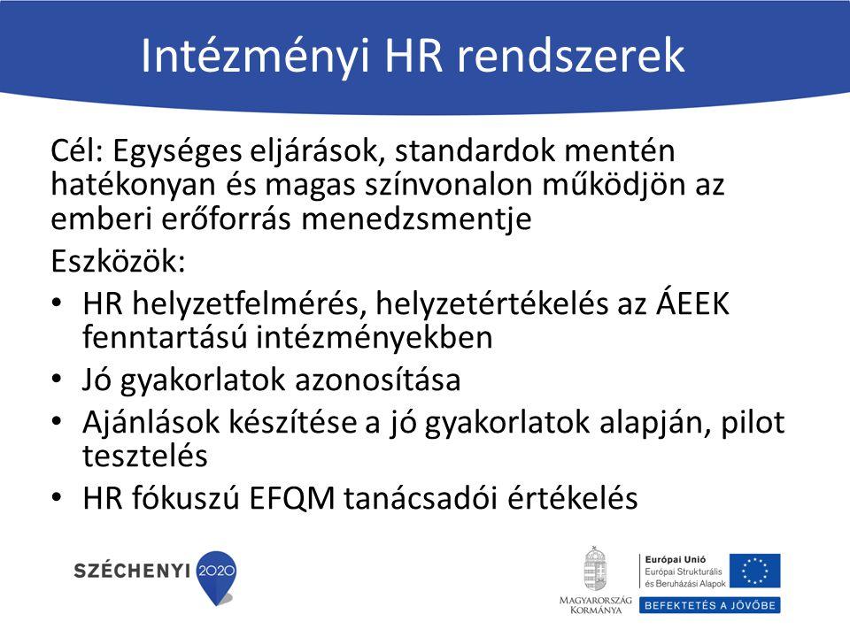 Intézményi HR rendszerek Cél: Egységes eljárások, standardok mentén hatékonyan és magas színvonalon működjön az emberi erőforrás menedzsmentje Eszközök: HR helyzetfelmérés, helyzetértékelés az ÁEEK fenntartású intézményekben Jó gyakorlatok azonosítása Ajánlások készítése a jó gyakorlatok alapján, pilot tesztelés HR fókuszú EFQM tanácsadói értékelés