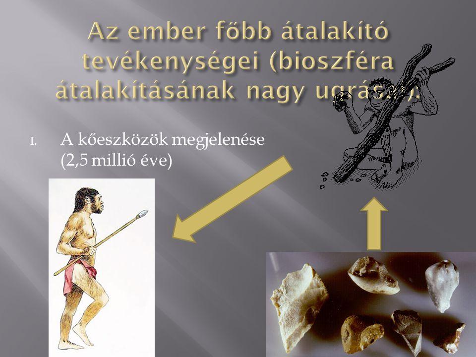 I. A kőeszközök megjelenése (2,5 millió éve)