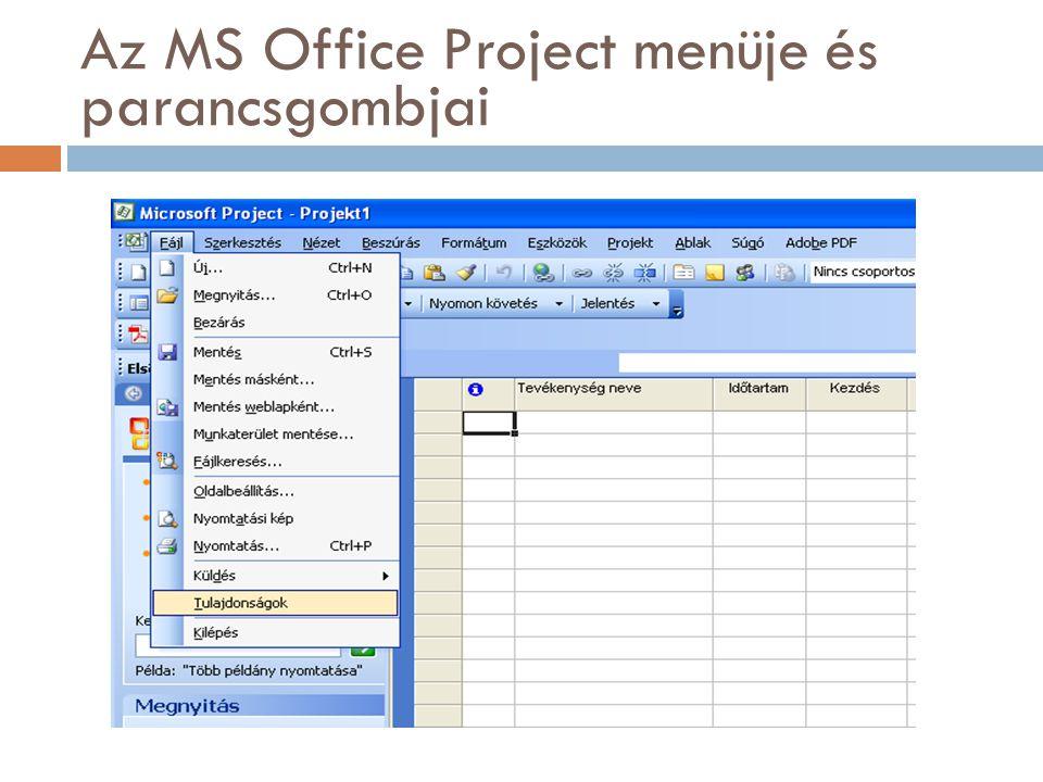 Az MS Office Project menüje és parancsgombjai