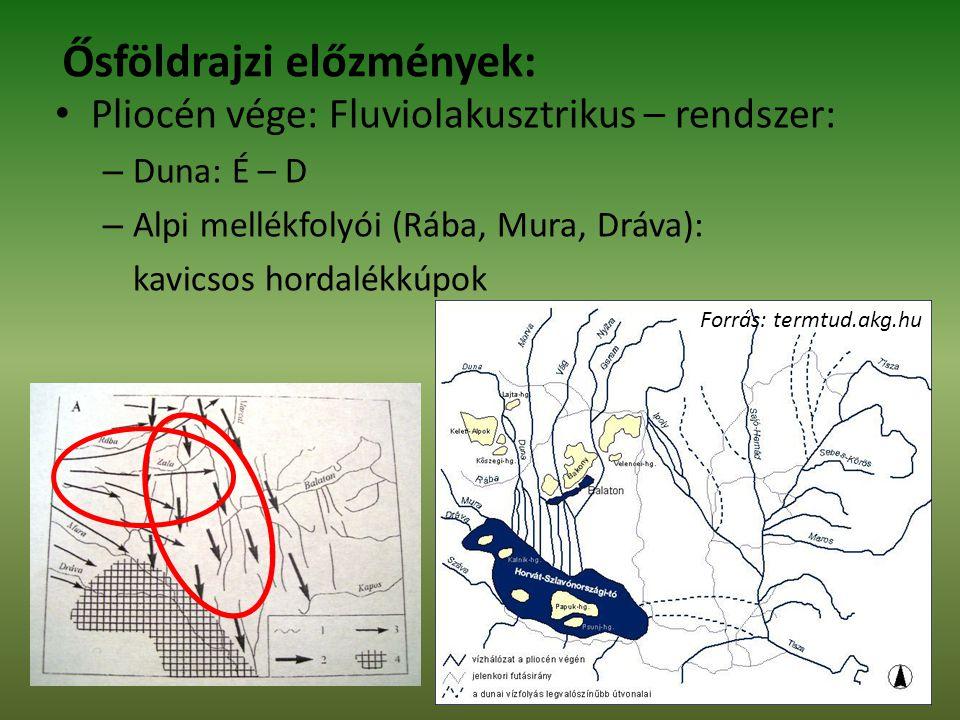 Ősföldrajzi előzmények: Pliocén vége: Fluviolakusztrikus – rendszer: – Duna: É – D – Alpi mellékfolyói (Rába, Mura, Dráva): kavicsos hordalékkúpok Forrás: termtud.akg.hu