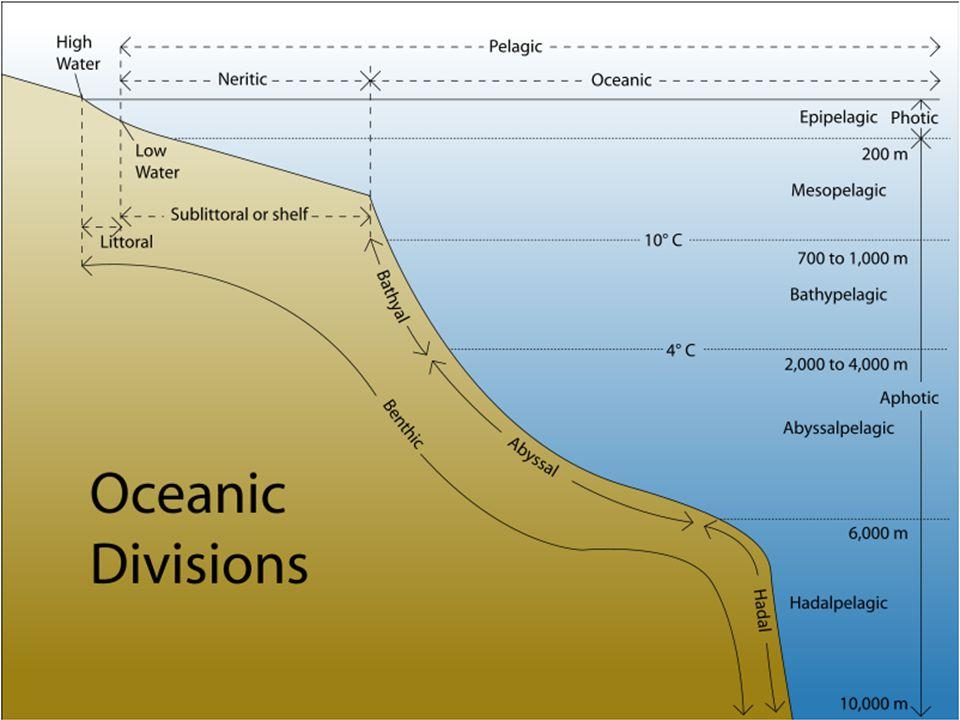 Óceánok Csendes óceán – 181,34 e.km 2 Atlanti óceán – 106,57 e.