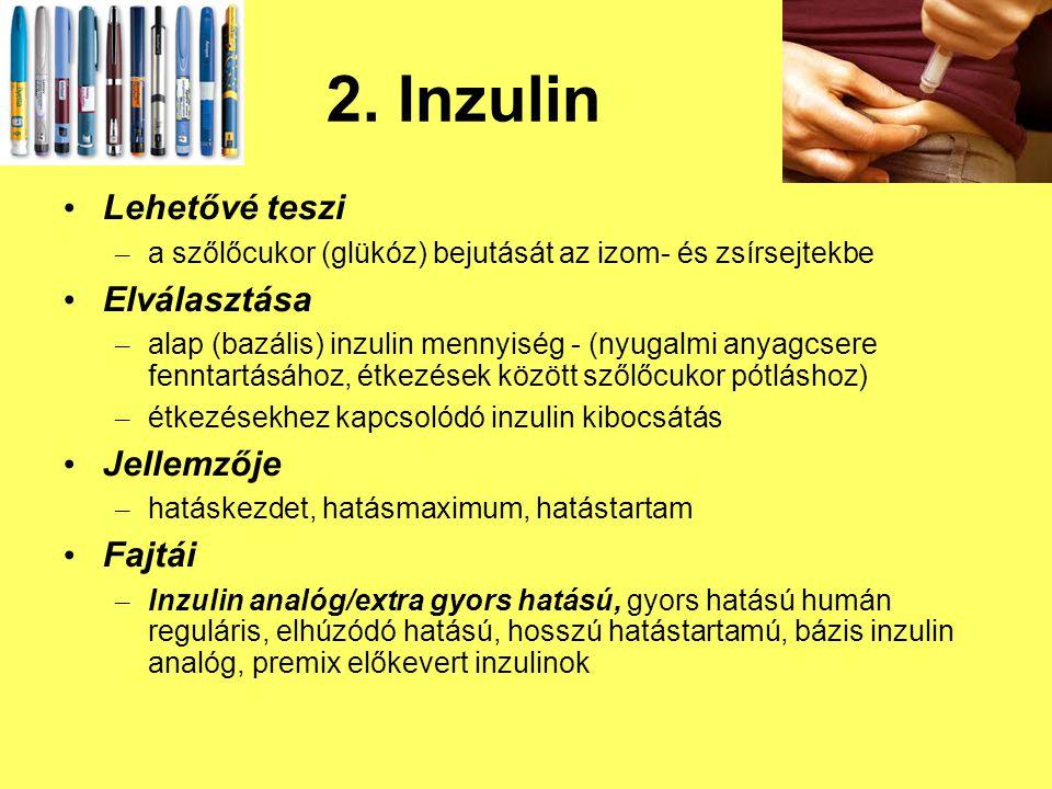 2. Inzulin Lehetővé teszi – a szőlőcukor (glükóz) bejutását az izom- és zsírsejtekbe Elválasztása – alap (bazális) inzulin mennyiség - (nyugalmi anyag