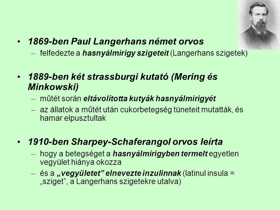 1869-ben Paul Langerhans német orvos – felfedezte a hasnyálmirigy szigeteit (Langerhans szigetek) 1889-ben két strassburgi kutató (Mering és Minkowski