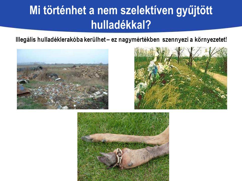 Illegális hulladéklerakóba kerülhet – ez nagymértékben szennyezi a környezetet! Mi történhet a nem szelektíven gyűjtött hulladékkal?