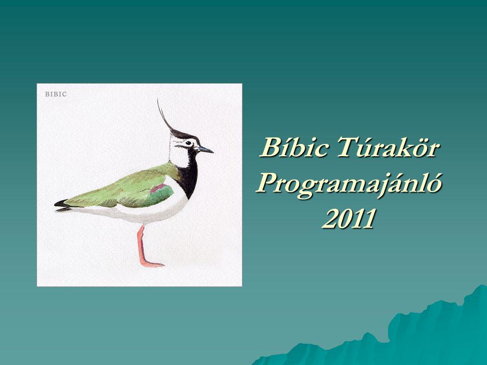 Bíbic Túrakör Programajánló 2011