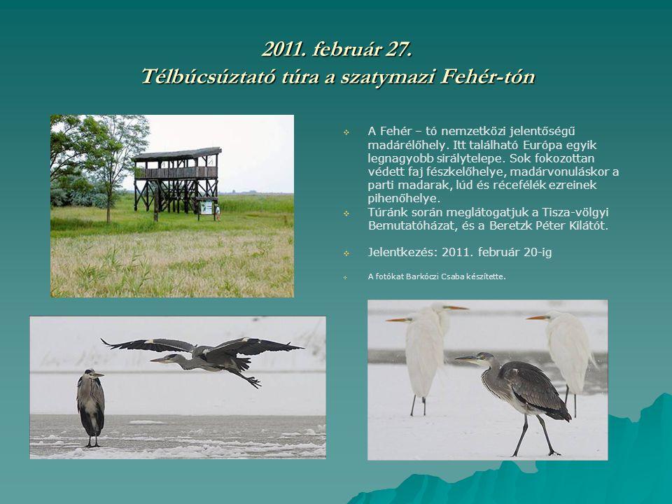 2011. február 27. Télbúcsúztató túra a szatymazi Fehér-tón   A Fehér – tó nemzetközi jelentőségű madárélőhely. Itt található Európa egyik legnagyobb