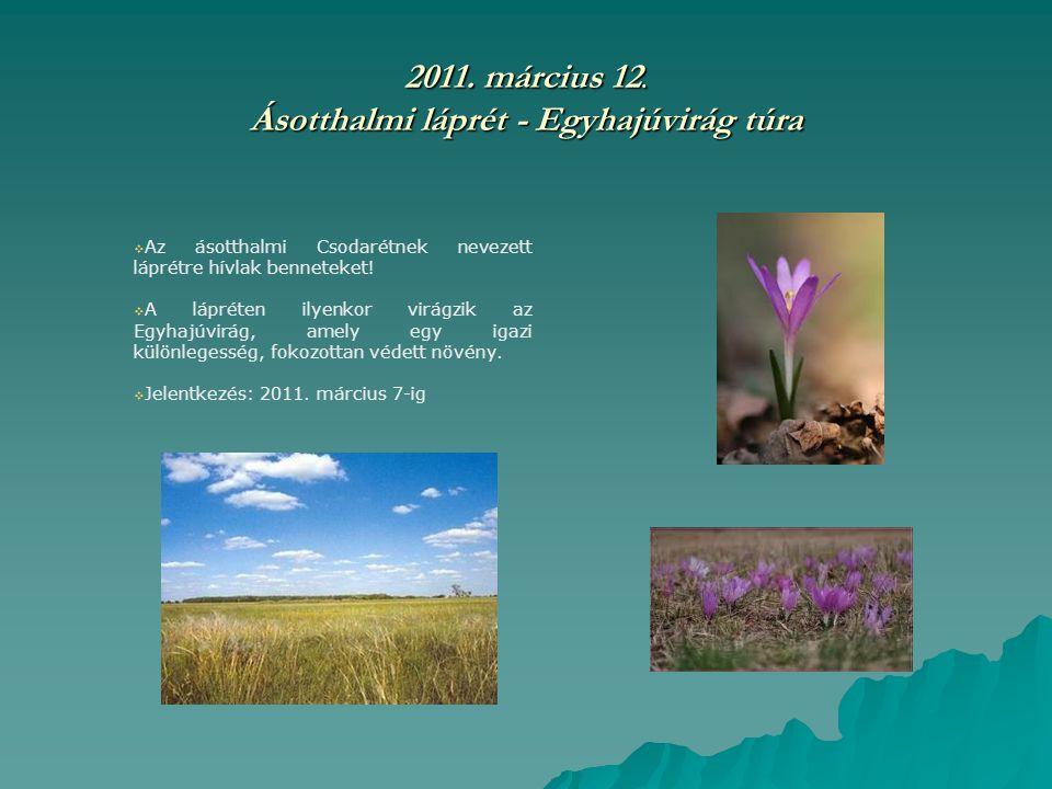 2011. március 12. Ásotthalmi láprét - Egyhajúvirág túra  Az ásotthalmi Csodarétnek nevezett láprétre hívlak benneteket!  A lápréten ilyenkor virágzi