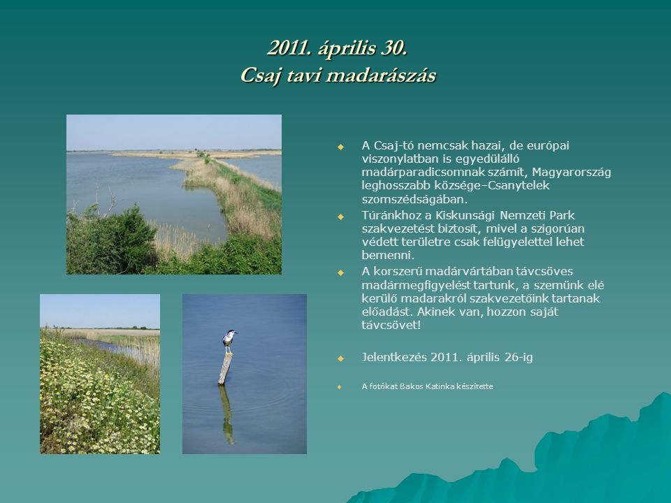 2011. április 30. Csaj tavi madarászás   A Csaj-tó nemcsak hazai, de európai viszonylatban is egyedülálló madárparadicsomnak számít, Magyarország le