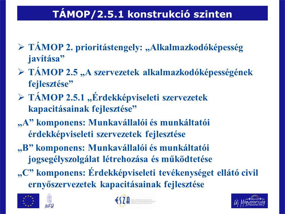 """TÁMOP/2.5.1 konstrukció szinten  TÁMOP 2. prioritástengely: """"Alkalmazkodóképesség javítása""""  TÁMOP 2.5 """"A szervezetek alkalmazkodóképességének fejle"""