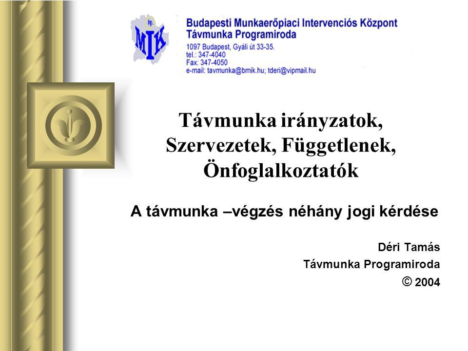 Összefoglaló Az Internet társadalmi forradalmasítása Az Internet hatása a fejlett ipari országok munkaerőpiacára A foglalkoztatási –szerkezet változása Magyarországon Az Internet elterjedése párhuzamosan indítja el a jogi, gazdasági és humán folyamatokat.