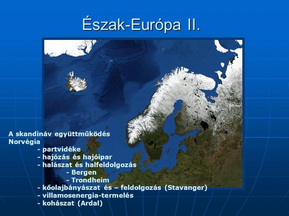 Észak-Európa II. A skandináv együttműködés Norvégia - partvidéke - hajózás és hajóipar - halászat és halfeldolgozás - Bergen - Trondheim - kőolajbányá