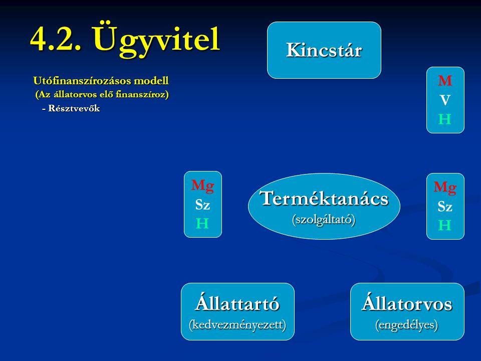 4.2. Ügyvitel Terméktanács(szolgáltató) Állattartó(kedvezményezett)Állatorvos(engedélyes) Kincstár Utófinanszírozásos modell (Az állatorvos elő finans