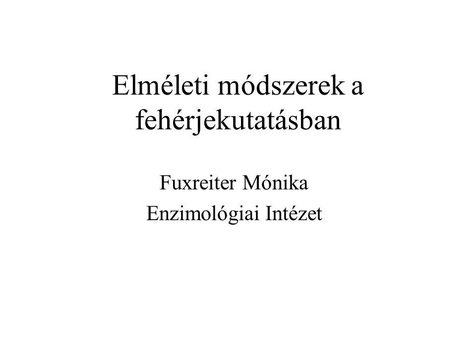 Elméleti módszerek a fehérjekutatásban Fuxreiter Mónika Enzimológiai Intézet