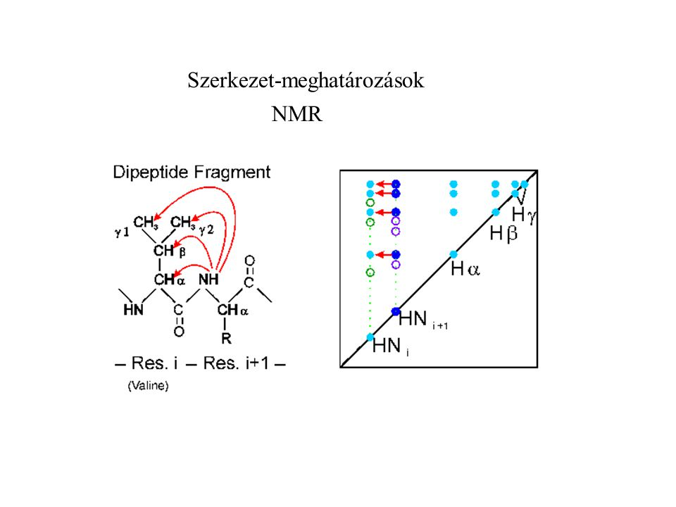 Szerkezet-meghatározások NMR