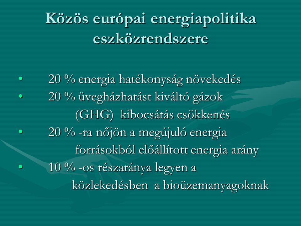 Közös európai energiapolitika eszközrendszere 20 % energia hatékonyság növekedés20 % energia hatékonyság növekedés 20 % üvegházhatást kiváltó gázok20 % üvegházhatást kiváltó gázok (GHG) kibocsátás csökkenés (GHG) kibocsátás csökkenés 20 % -ra nőjön a megújuló energia20 % -ra nőjön a megújuló energia forrásokból előállított energia arány forrásokból előállított energia arány 10 % -os részaránya legyen a10 % -os részaránya legyen a közlekedésben a bioüzemanyagoknak közlekedésben a bioüzemanyagoknak