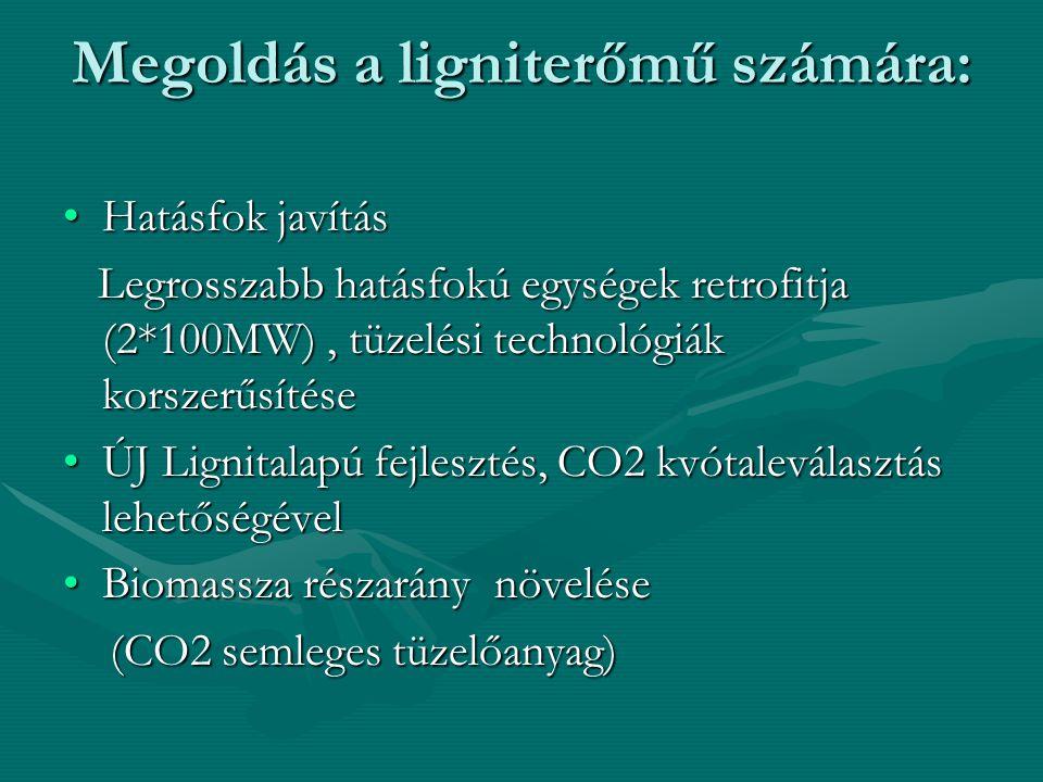 Megoldás a ligniterőmű számára: Hatásfok javításHatásfok javítás Legrosszabb hatásfokú egységek retrofitja (2*100MW), tüzelési technológiák korszerűsítése Legrosszabb hatásfokú egységek retrofitja (2*100MW), tüzelési technológiák korszerűsítése ÚJ Lignitalapú fejlesztés, CO2 kvótaleválasztás lehetőségévelÚJ Lignitalapú fejlesztés, CO2 kvótaleválasztás lehetőségével Biomassza részarány növeléseBiomassza részarány növelése (CO2 semleges tüzelőanyag) (CO2 semleges tüzelőanyag)