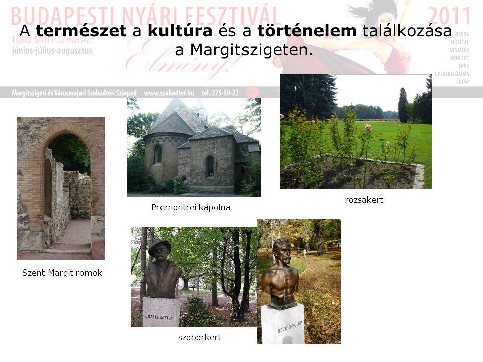 A természet a kultúra és a történelem találkozása a Margitszigeten.