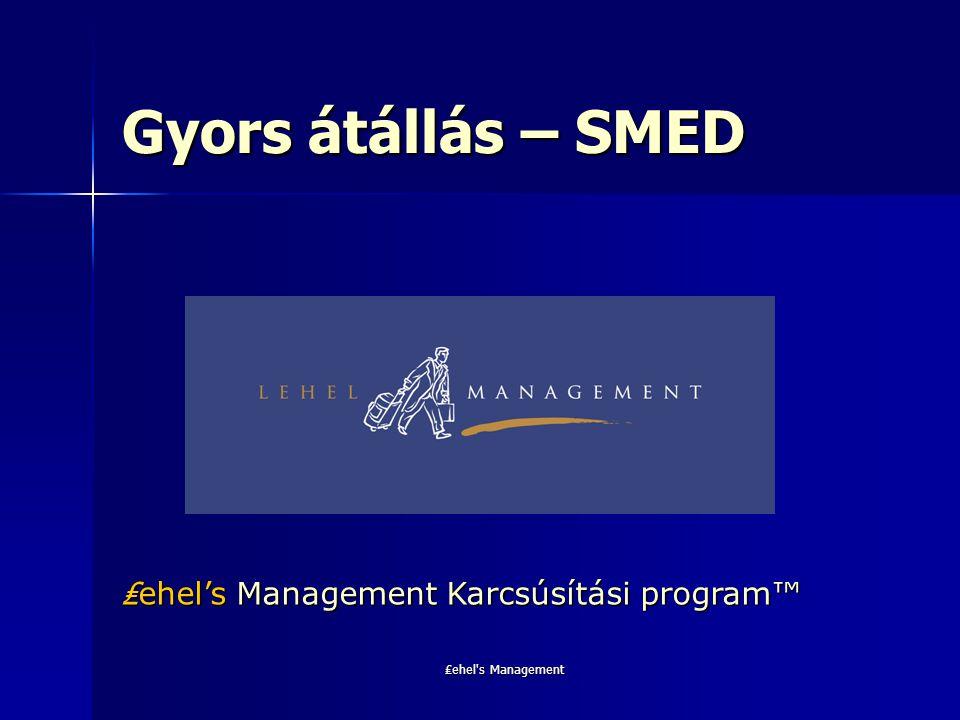 ₤ehel's Management Gyors átállás – SMED ₤ ehel's Management Karcsúsítási program™