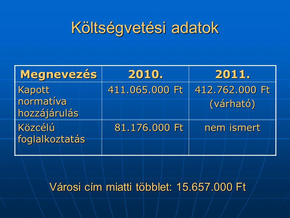 Költségvetési adatok Megnevezés2010.2011.