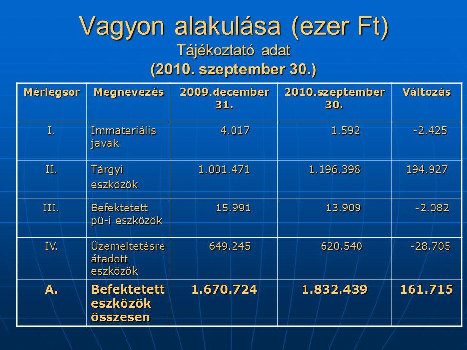 Vagyon alakulása (ezer Ft) Tájékoztató adat (2010.