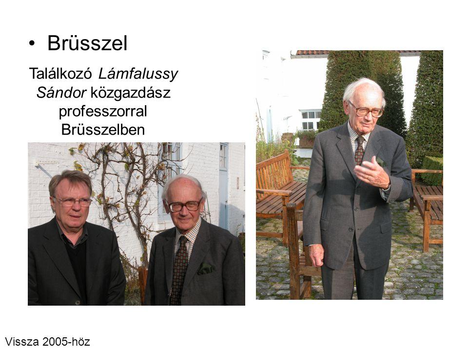 Brüsszel Találkozó Lámfalussy Sándor közgazdász professzorral Brüsszelben Vissza 2005-höz