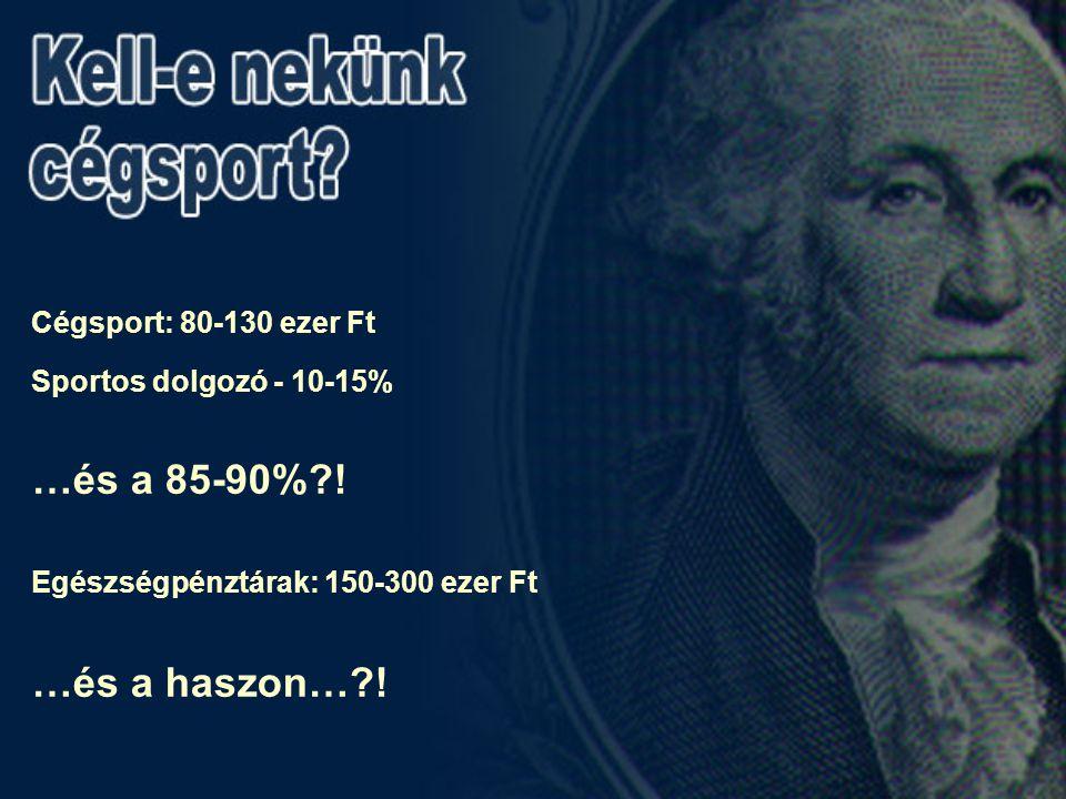 Cégsport: 80-130 ezer Ft Sportos dolgozó - 10-15% …és a 85-90%?.