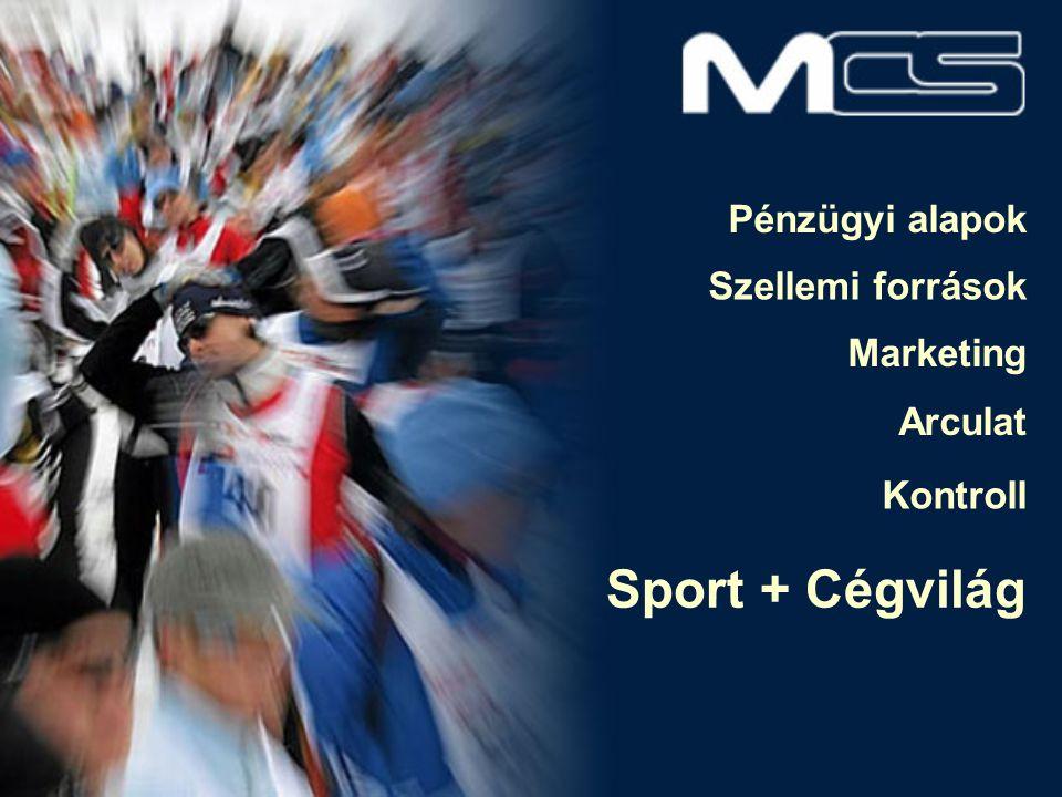Pénzügyi alapok Szellemi források Marketing Arculat Kontroll Sport + Cégvilág