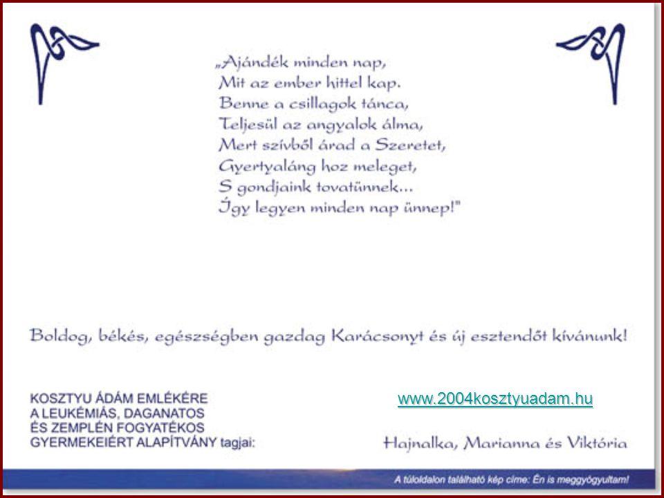 www.2004kosztyuadam.hu